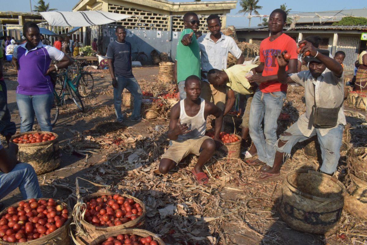 モザンビーク67週目(10/7~10/13)全国市長選挙!うちの地域だけ外出禁止?でも投票場に潜入してみた話。